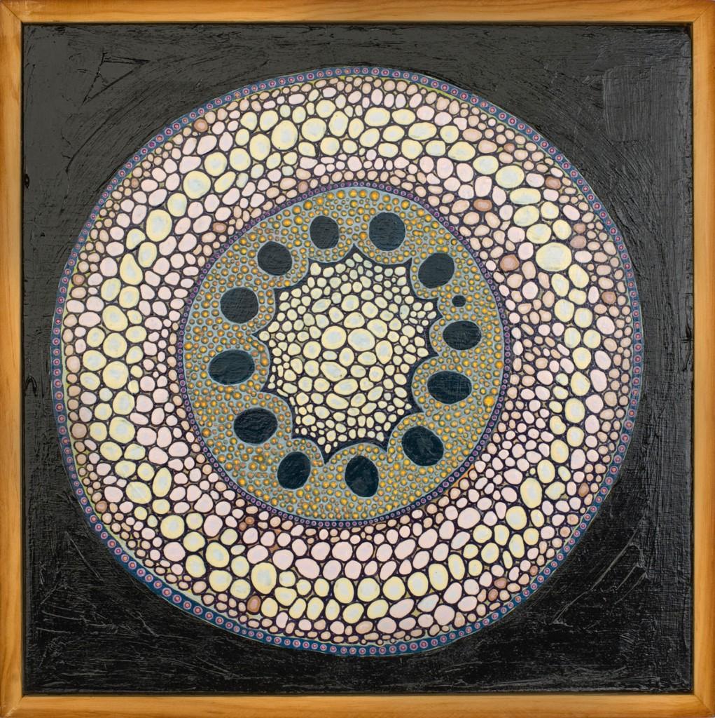 """""""Monocot Root"""", by Bridget May"""